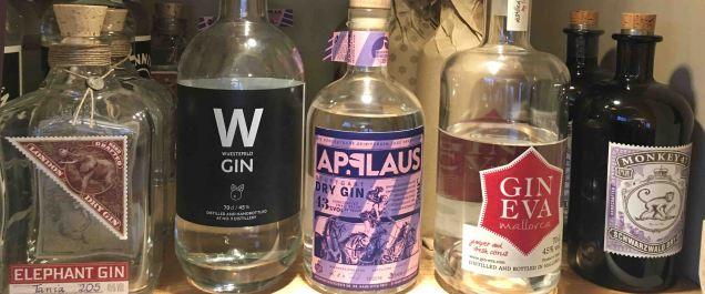 gin-web