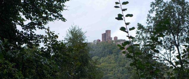 Burg Trifels - web